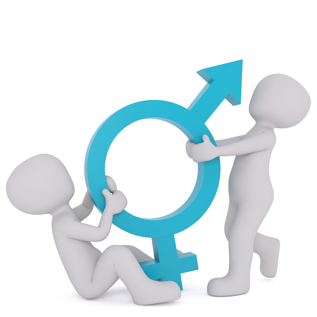 Płeć w spisie powszechnym